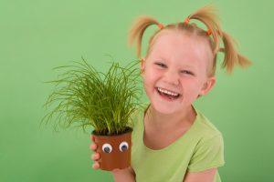 környezeti nevelés, növényszeretet megtanítása