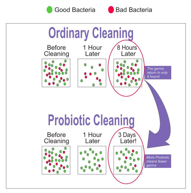 Hatás angol probiotics
